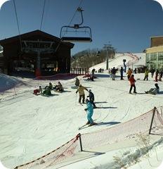 Ski in Korea